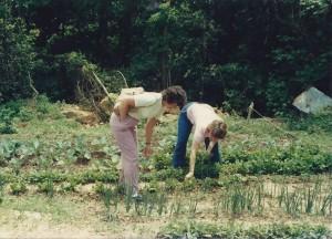 The first community garden.